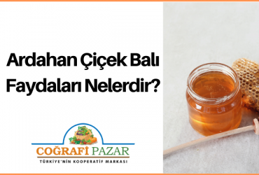 Ardahan-Cicek-Bali-Faydalari..